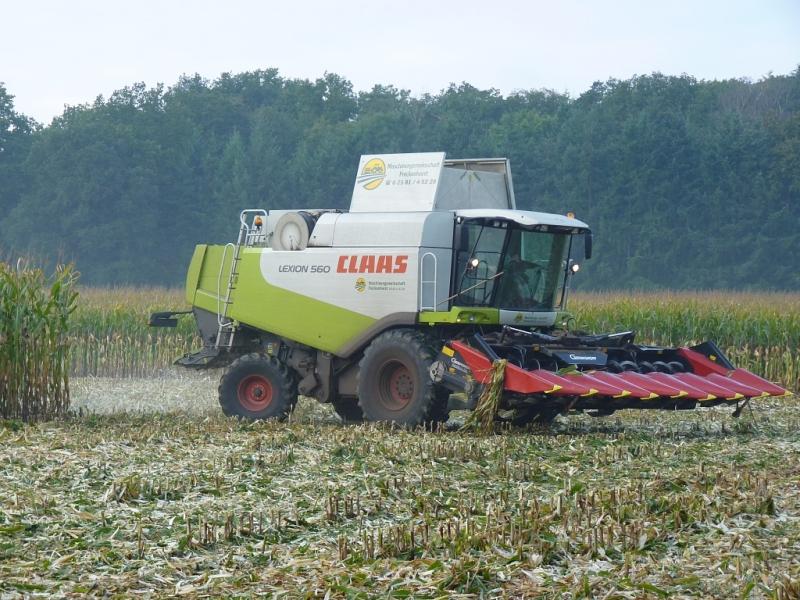 Claas Lexion 560 mit Geringhoff Maispflücker